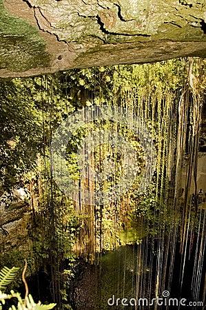 Maya cave