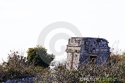 Mayan Ruins before White Background