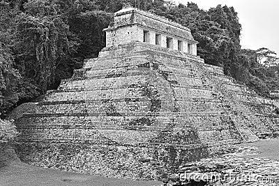 Mayan temple of calakmul