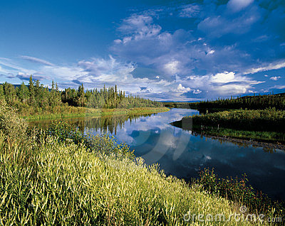 Mayo River in Yukon