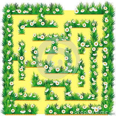 Maze in the garden