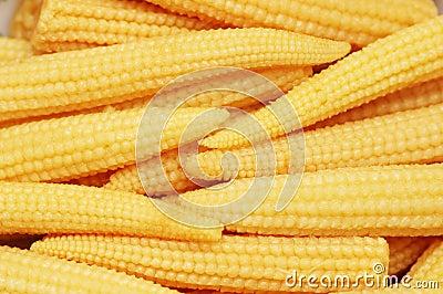 Mazorcas de maíz de bebé dispuestas como fondo