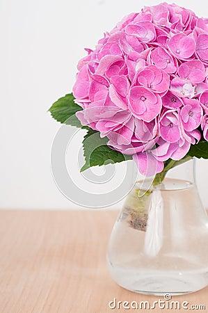Ortensie rosa su una tavola di legno immagini stock for Disegni del mazzo del secondo piano