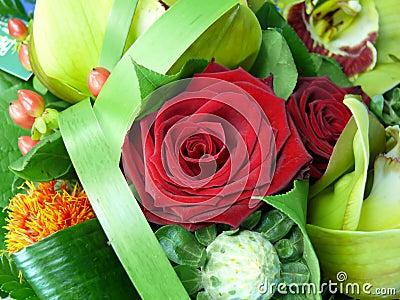 Mazzo di rosa di colore rosso