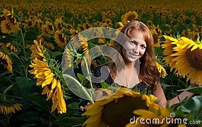 Mädchen in den Sonnenblumen