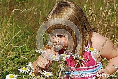 Meadow Annie A