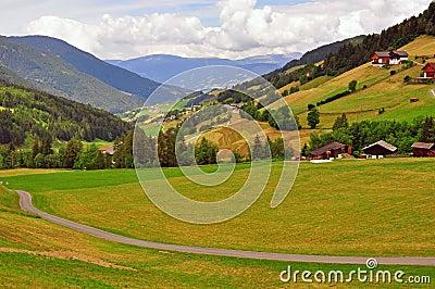 Meadow in Dolomites