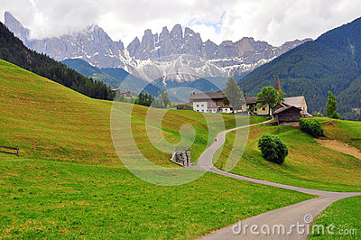 Meadow in Dolomites, Italy