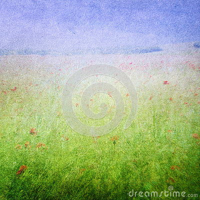 Meadow flowers background
