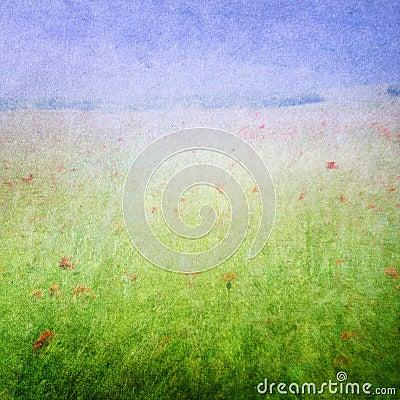Meadow flowers background