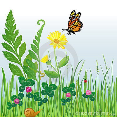 Meadow Flowers and Insects/eps