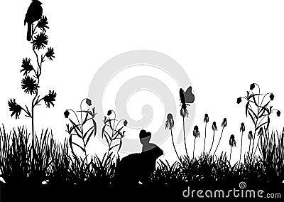 Meadow_scene