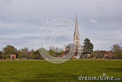 Meadow spire