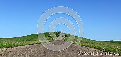 Meadows and country road. Kakheti. Georgia.