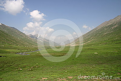 Meadows of Mullah-ke-besti