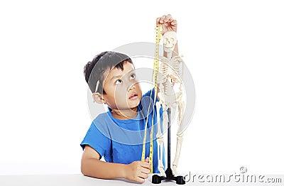 Measurement of human skeleton