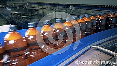 Meccanismo della fabbrica che trasporta abbondanza delle bottiglie di birra stock footage
