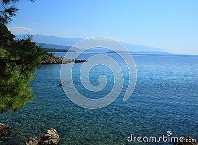Medelhavs- hav