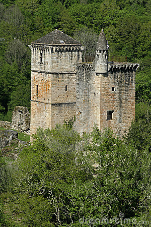 Mediaval castle in forest