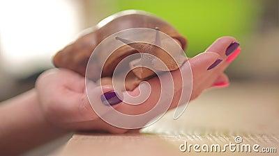 Medicinska kosmetiska sniglar kryper på deras händer, stora blötdjur stock video