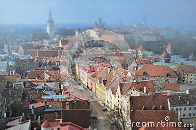 Medieval Capital