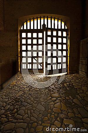 Medieval castle doors