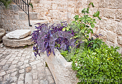 Medieval Courtyard, Trogir, Croatia