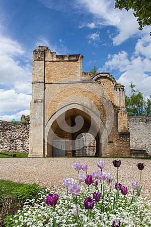 Senlis - medieval gate and violet tulips