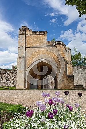 Senlis - medieval gate and violet tulips