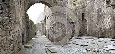 Medieval Irish abbey ruins