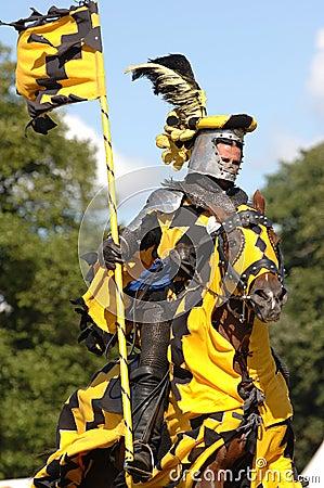 medieval-knight-riding-a-horse-thumb1036697.jpg