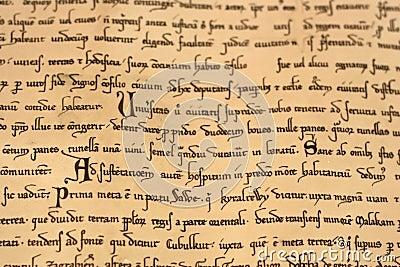 Medieval latin script