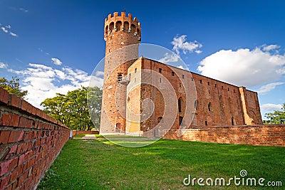 Medieval Teutonic castle in Swiecie