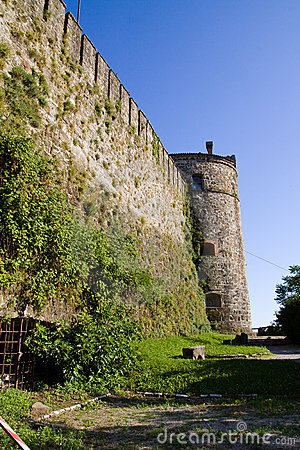 Medieval walls and tower, with ivy