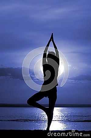 Meditate женщины силуэта