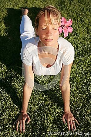 Meditation on a Lawn
