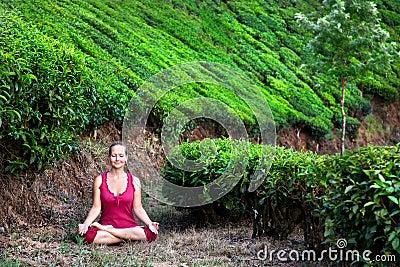Meditation in tea plantations