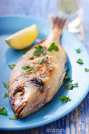 Free Mediterranean Fish Royalty Free Stock Images - 1568899