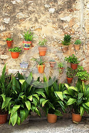 Free Mediterranean Flowerpots On A Rustic Wall Stock Photography - 56104362