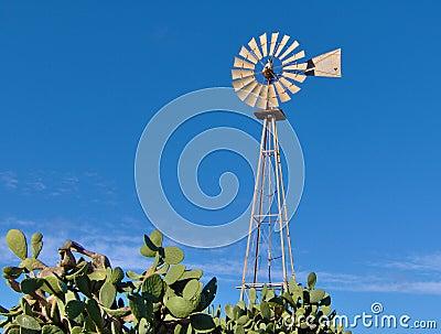 Mediterranean Windmill - Malta