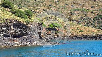 Meeresküste mit Felsen und Bäumen auf einem steilen stock video