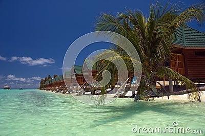 Meeru beach cabins