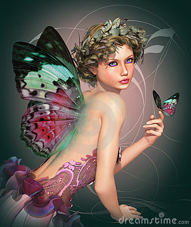 Meet a Butterfly