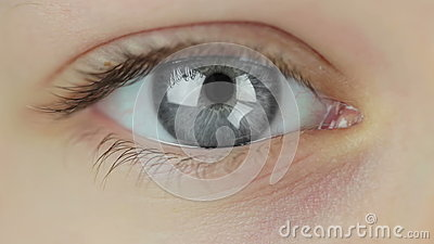 Mehrfarbige Kontaktlinsen. Nahtlose Schleife