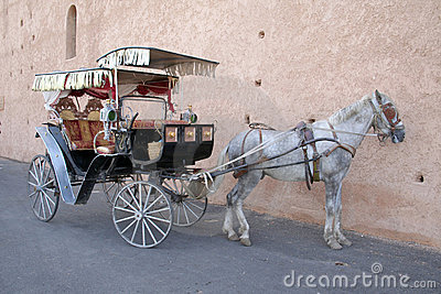 Meknes hackney carriage