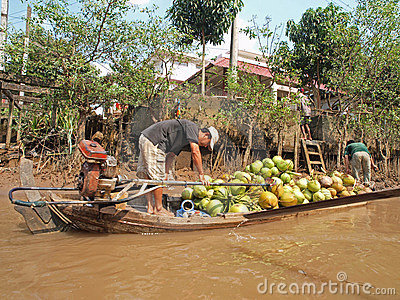 Mekong River, Coconut & Boat Editorial Image
