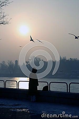 Melancholie door Donau