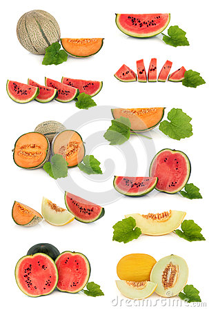 Free Melon Fruit Collection Royalty Free Stock Photography - 24843687