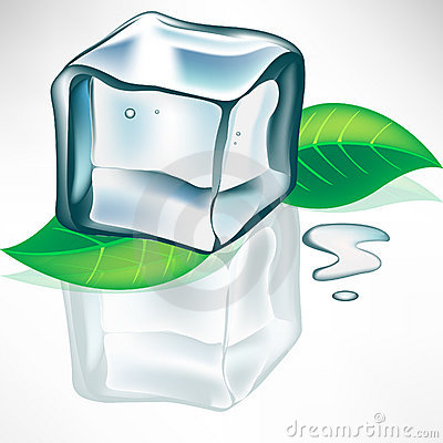 Melting ice cube with leaves