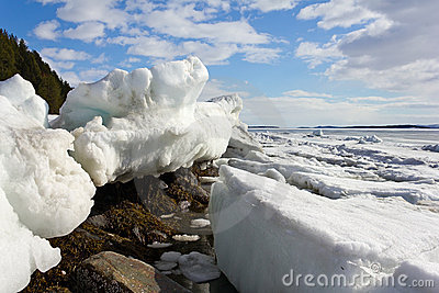 Melting of sea ice
